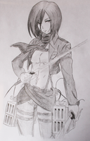 Mikasa by Htomptid