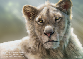 Lion portrait 2013 by KatrineH