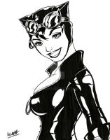 Catwoman by clarkeeboy