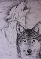 Ink Wolves by Yesterlove