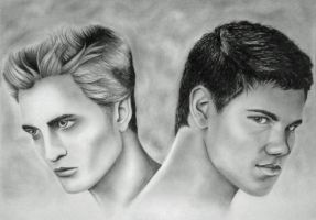 Edward vs. Jacob by C-PRO