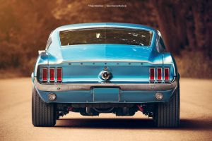 1967 Ford Mustang Fastback Rear by AmericanMuscle