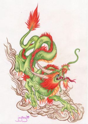 tattoo designs dragon yin yang - dental insurance