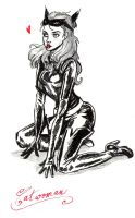 Catwoman by Queen-of-cydonia