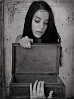 The Box II by MarinaCoric