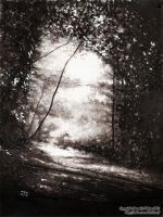 The Path by Dorothy-T-Rose