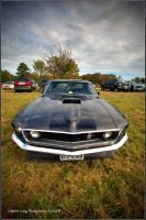 Stang 2 by fizzle017