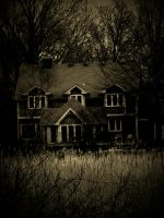 Haunted House by TropicalxLondon