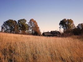 House in  front of golden fields by MrFotkerman