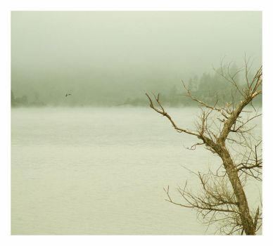 The Lake by allelic