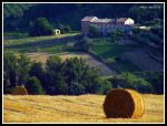 MONTECAROTTO (AN) - SUMMER SUGGESTIONS by MarcoLorenzetti