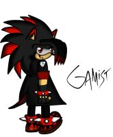 gamist the hedgehog coloured by GamistTH