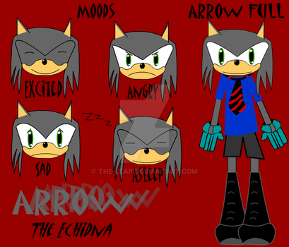 FCs - Arrow the Echidna by The-Leap