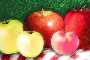 Apples by MollyD