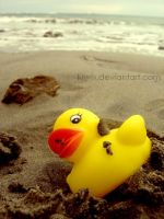 Ducky was a duck by eulalievarenne