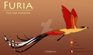 Furia the fire phoenix - RANDOM CHARACTER by zavraan