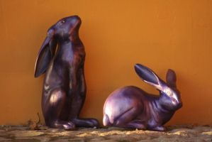 two violet rabbits by gabitur