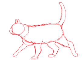 Cat Anatomy- sketch practice by Artist-Who-Draws