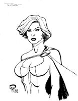Powergirl by Roger-Robinson