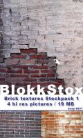 Bricks Texture pack 1 by BlokkStox