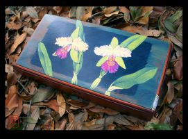 Two Cattleya's for Mom by BabyGig