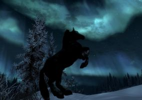 horse with polarnight 3 - skyrim by Giarra