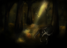 Lost wood by Killeryume