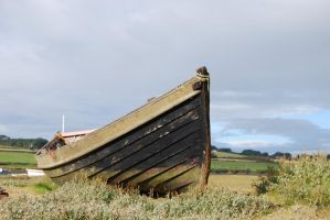 Old Boat Prow by mr-macd
