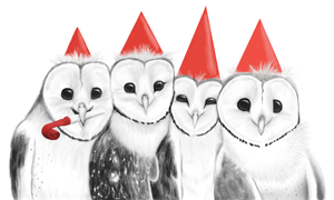 Say Cheese! - Owl House 4th Birthday by AlbaStrix