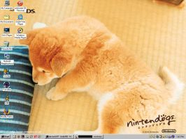 Nintendogs Desktop by jkelly888