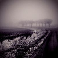 CLXXXVIII. ..it the fog by behherit