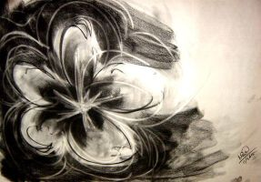 flower -charcoal- by Mimiluvbug
