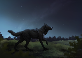 Never by Canis-ferox