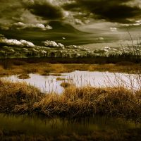 Clouds over the marsh by VexingArt