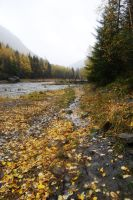 Muddy River 13 by prints-of-stock