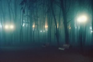 Fog in the park 2 by dammmmit