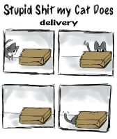 stupid shit my cat does: delivery by michellescribbles