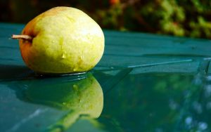 Two pears by frenchija