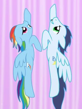 Dash And Soarin' by o0VinylScratch0o