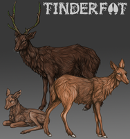 Tinderfoot: Bases by reviro