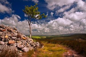 Northumberland Landscape 5 by newcastlemale