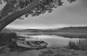Late Evening at Loch Ard in Stirlingshire B/W by BusterBrownBB
