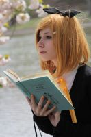 Reading Stock 31 by Malleni-Stock