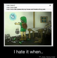 I hate it when.... by soulfox360