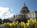 St. Paul upon Flowers by X-Luminare-X