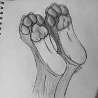 Feet paw practice by MatchCense