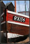 RX134 by Tiger--photography