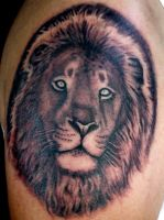 lion tattoo by thothflashpan