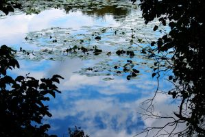 blue Sky Glass pond by swordedsaint