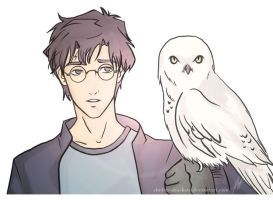 Harry and Hedwig by Chidori-aka-Kate